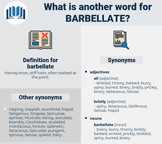 barbellate, synonym barbellate, another word for barbellate, words like barbellate, thesaurus barbellate
