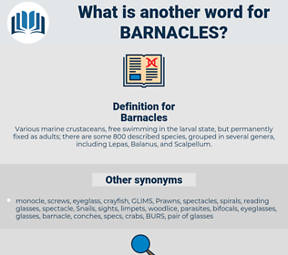 Barnacles, synonym Barnacles, another word for Barnacles, words like Barnacles, thesaurus Barnacles