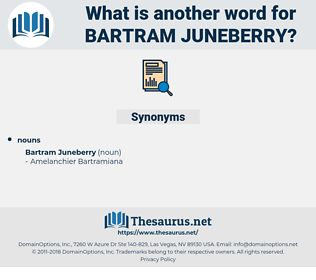 Bartram Juneberry, synonym Bartram Juneberry, another word for Bartram Juneberry, words like Bartram Juneberry, thesaurus Bartram Juneberry