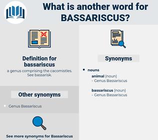 bassariscus, synonym bassariscus, another word for bassariscus, words like bassariscus, thesaurus bassariscus