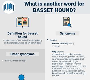 basset hound, synonym basset hound, another word for basset hound, words like basset hound, thesaurus basset hound