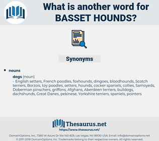 basset hounds, synonym basset hounds, another word for basset hounds, words like basset hounds, thesaurus basset hounds