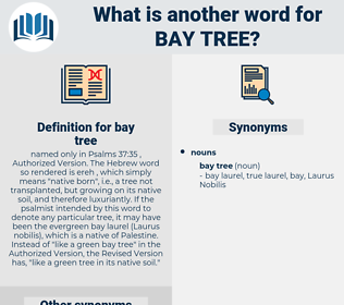 bay tree, synonym bay tree, another word for bay tree, words like bay tree, thesaurus bay tree