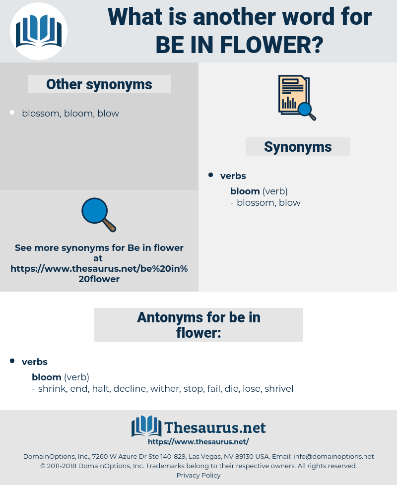 be in flower, synonym be in flower, another word for be in flower, words like be in flower, thesaurus be in flower
