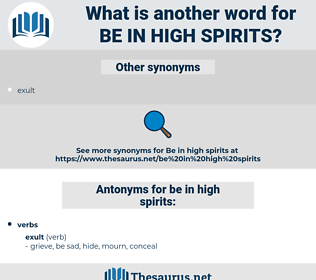 be in high spirits, synonym be in high spirits, another word for be in high spirits, words like be in high spirits, thesaurus be in high spirits