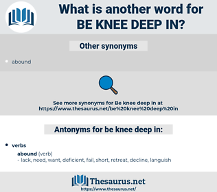be knee deep in, synonym be knee deep in, another word for be knee deep in, words like be knee deep in, thesaurus be knee deep in