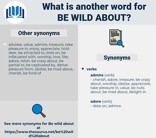 be wild about, synonym be wild about, another word for be wild about, words like be wild about, thesaurus be wild about