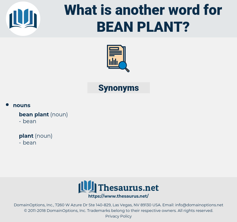 bean plant, synonym bean plant, another word for bean plant, words like bean plant, thesaurus bean plant