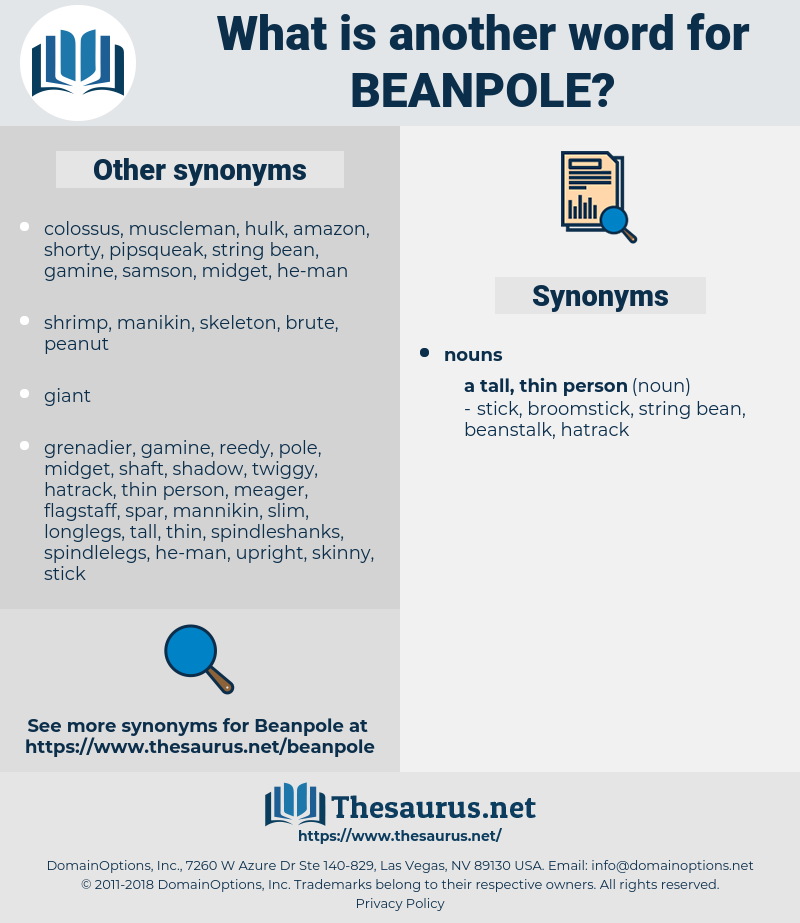 beanpole, synonym beanpole, another word for beanpole, words like beanpole, thesaurus beanpole