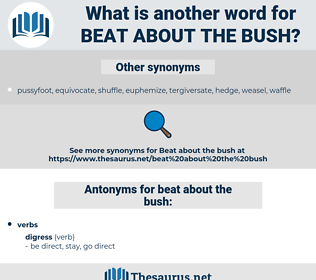 beat about the bush, synonym beat about the bush, another word for beat about the bush, words like beat about the bush, thesaurus beat about the bush