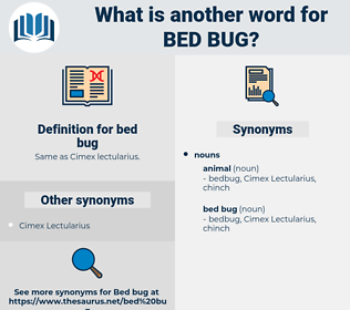 bed bug, synonym bed bug, another word for bed bug, words like bed bug, thesaurus bed bug