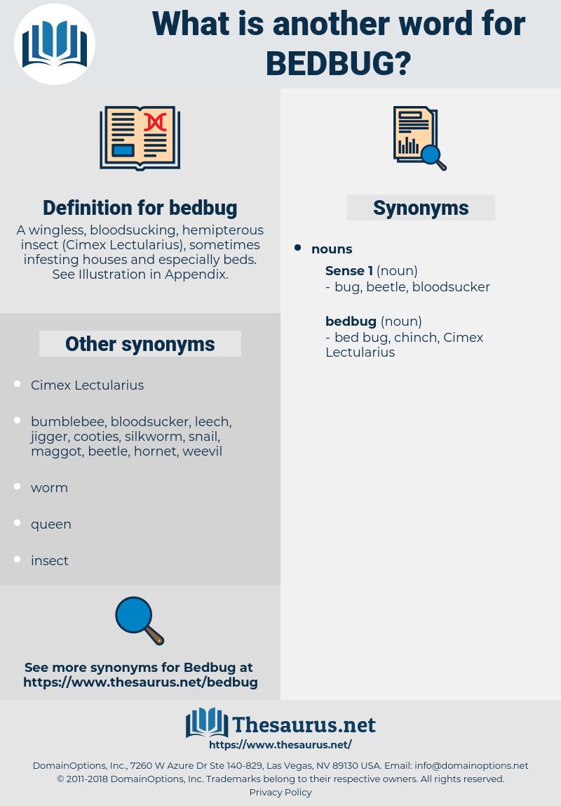 bedbug, synonym bedbug, another word for bedbug, words like bedbug, thesaurus bedbug