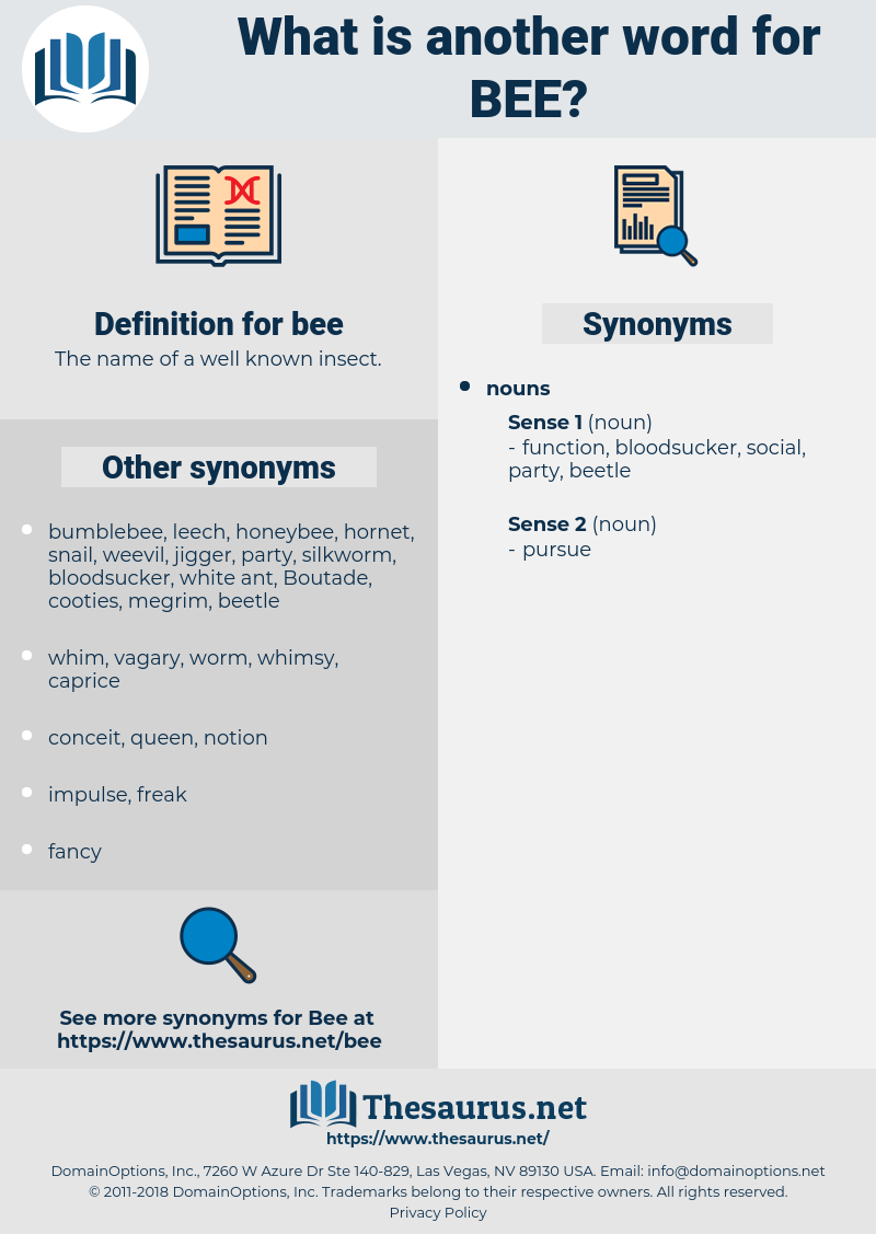 bee, synonym bee, another word for bee, words like bee, thesaurus bee
