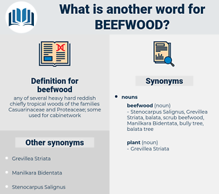 beefwood, synonym beefwood, another word for beefwood, words like beefwood, thesaurus beefwood