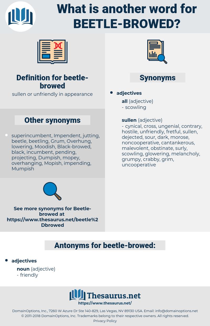 beetle-browed, synonym beetle-browed, another word for beetle-browed, words like beetle-browed, thesaurus beetle-browed