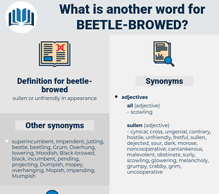 beetle-browed, synonym beetle-browed, another word for beetle-browed, words like beetle-browed, thesaurus beetle-browed