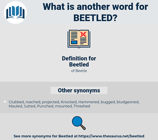 Beetled, synonym Beetled, another word for Beetled, words like Beetled, thesaurus Beetled