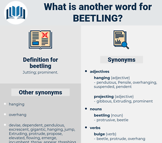 beetling, synonym beetling, another word for beetling, words like beetling, thesaurus beetling
