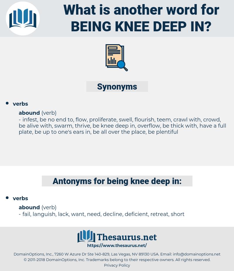 being knee deep in, synonym being knee deep in, another word for being knee deep in, words like being knee deep in, thesaurus being knee deep in