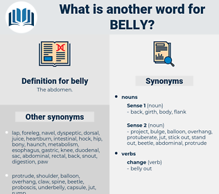 belly, synonym belly, another word for belly, words like belly, thesaurus belly