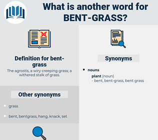 bent grass, synonym bent grass, another word for bent grass, words like bent grass, thesaurus bent grass