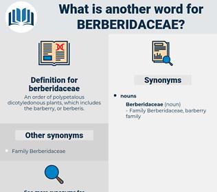 berberidaceae, synonym berberidaceae, another word for berberidaceae, words like berberidaceae, thesaurus berberidaceae