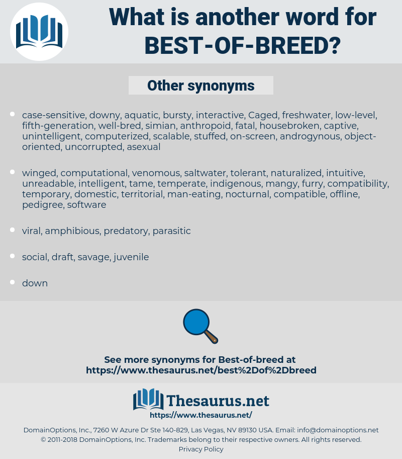 best-of-breed, synonym best-of-breed, another word for best-of-breed, words like best-of-breed, thesaurus best-of-breed