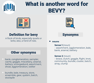 bevy, synonym bevy, another word for bevy, words like bevy, thesaurus bevy