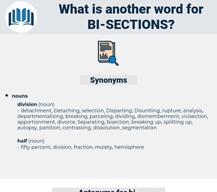 bi sections, synonym bi sections, another word for bi sections, words like bi sections, thesaurus bi sections