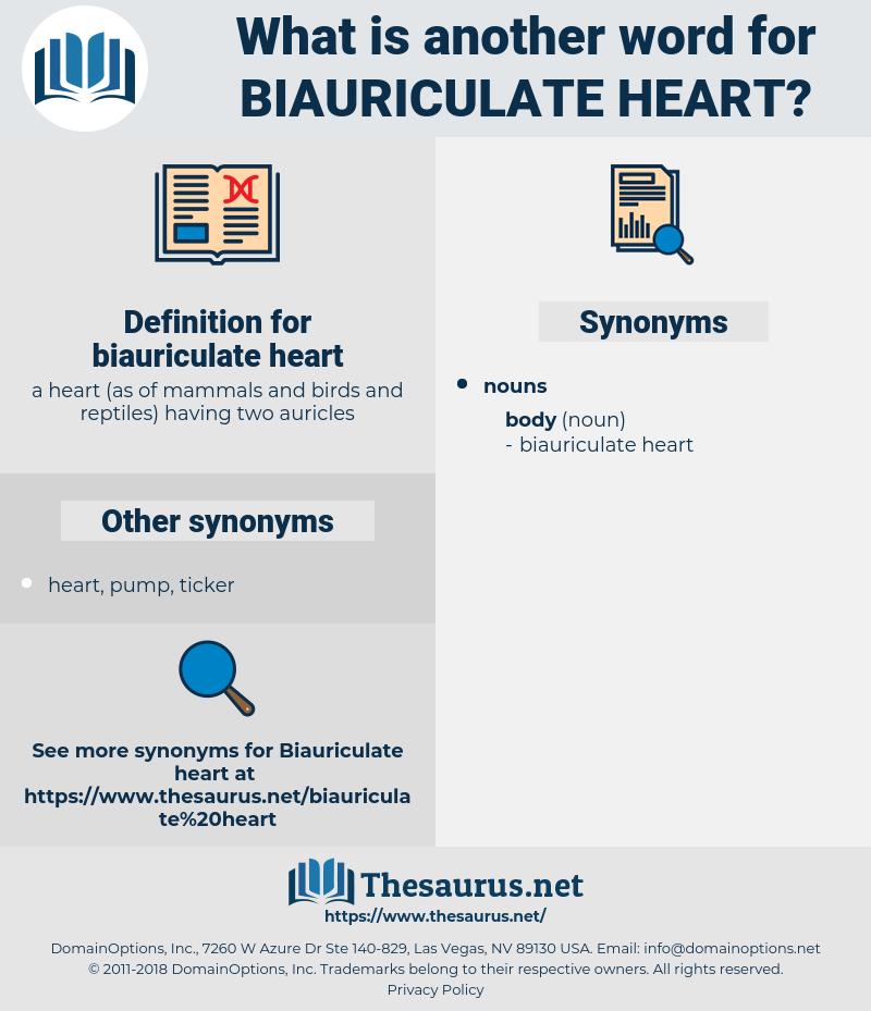 biauriculate heart, synonym biauriculate heart, another word for biauriculate heart, words like biauriculate heart, thesaurus biauriculate heart