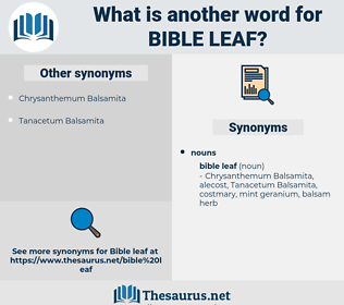 bible leaf, synonym bible leaf, another word for bible leaf, words like bible leaf, thesaurus bible leaf
