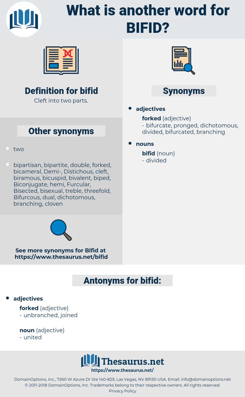 bifid, synonym bifid, another word for bifid, words like bifid, thesaurus bifid