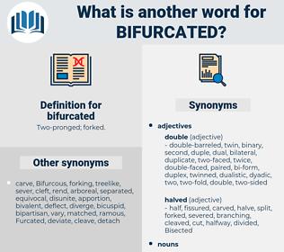 bifurcated, synonym bifurcated, another word for bifurcated, words like bifurcated, thesaurus bifurcated