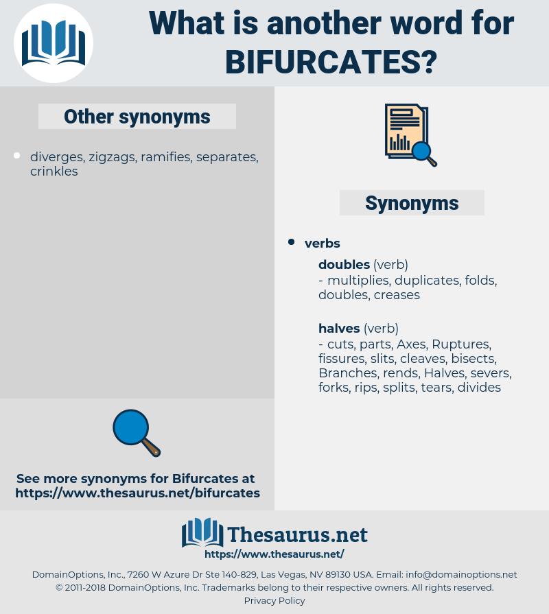 bifurcates, synonym bifurcates, another word for bifurcates, words like bifurcates, thesaurus bifurcates