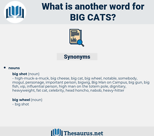 big cats, synonym big cats, another word for big cats, words like big cats, thesaurus big cats