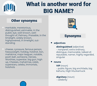 big-name, synonym big-name, another word for big-name, words like big-name, thesaurus big-name