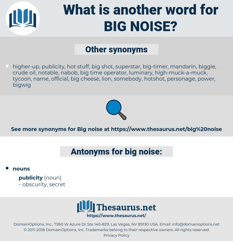 big noise, synonym big noise, another word for big noise, words like big noise, thesaurus big noise