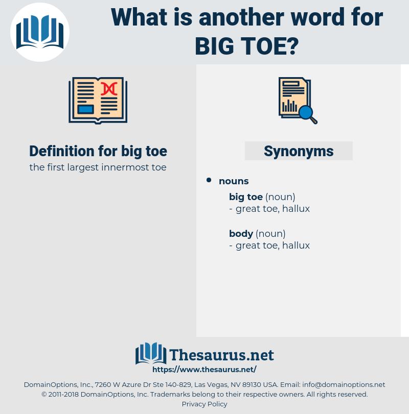 big toe, synonym big toe, another word for big toe, words like big toe, thesaurus big toe