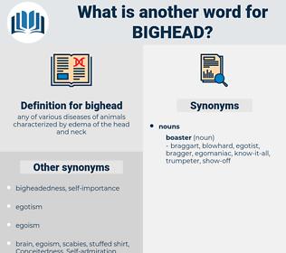 bighead, synonym bighead, another word for bighead, words like bighead, thesaurus bighead