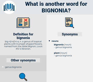 bignonia, synonym bignonia, another word for bignonia, words like bignonia, thesaurus bignonia