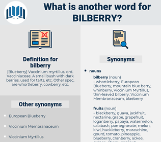 bilberry, synonym bilberry, another word for bilberry, words like bilberry, thesaurus bilberry