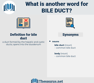 bile duct, synonym bile duct, another word for bile duct, words like bile duct, thesaurus bile duct