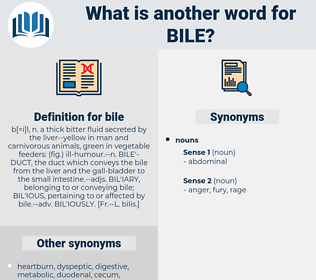 bile, synonym bile, another word for bile, words like bile, thesaurus bile