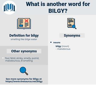 bilgy, synonym bilgy, another word for bilgy, words like bilgy, thesaurus bilgy