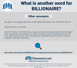 billionaire, synonym billionaire, another word for billionaire, words like billionaire, thesaurus billionaire