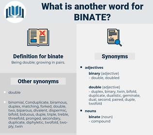 binate, synonym binate, another word for binate, words like binate, thesaurus binate
