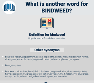 bindweed, synonym bindweed, another word for bindweed, words like bindweed, thesaurus bindweed