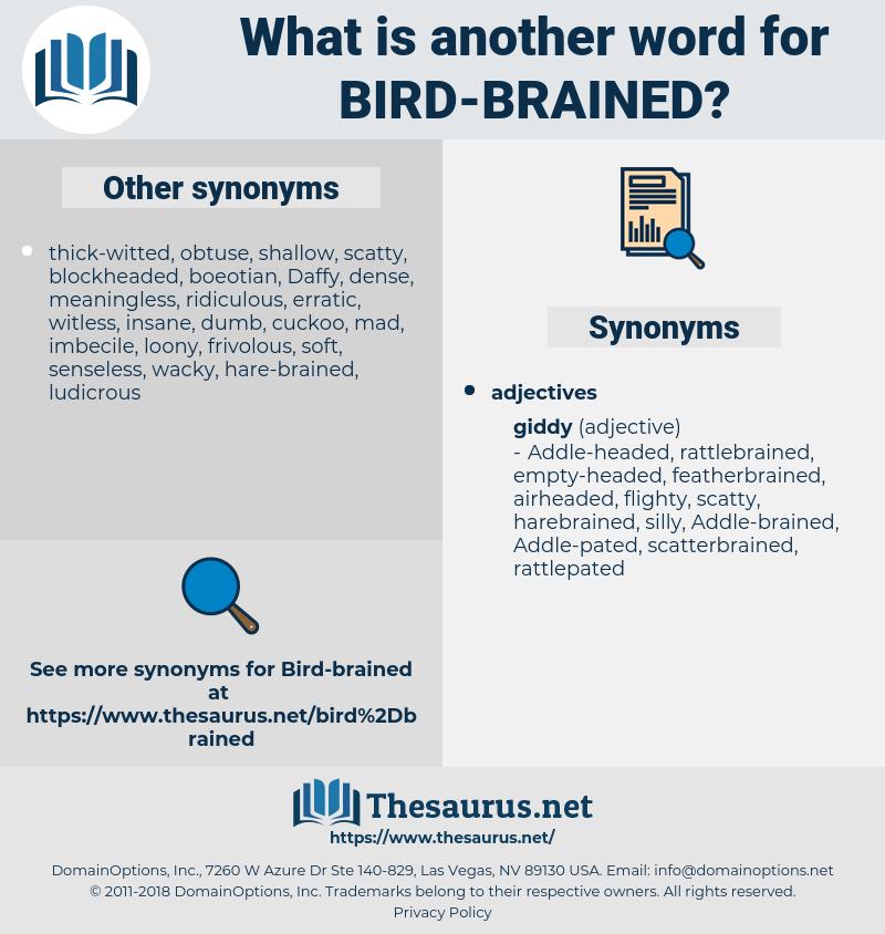 bird-brained, synonym bird-brained, another word for bird-brained, words like bird-brained, thesaurus bird-brained