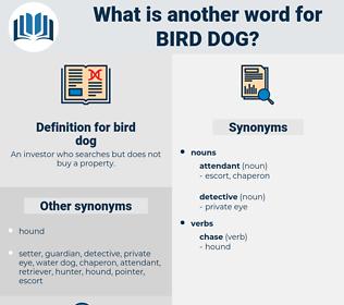 bird dog, synonym bird dog, another word for bird dog, words like bird dog, thesaurus bird dog