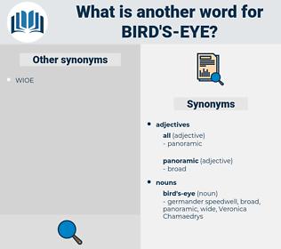 bird's eye, synonym bird's eye, another word for bird's eye, words like bird's eye, thesaurus bird's eye